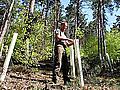 Waldbegehung in Großheubach 2012 - Foto: Eva M.Lüft (Main-Echo)