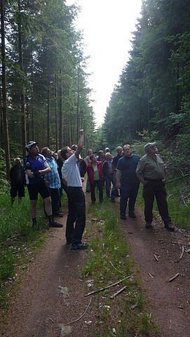Waldbegehung in Großheubach 2012