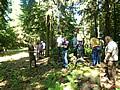 Waldbegang mit dem Großheubacher Gemeinderat durch die Interforst GmbH