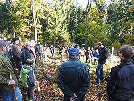 Waldbegehung 2013 im Mönchberger Kommunalwald