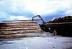 Bild - Langholztransporte