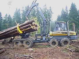 Bild -Die perfekte Holzrückemaschine - der Ponsse Buffalo