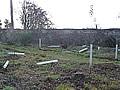 Neubepflanzung der ProForst-Fläche am Engelberg in Großheubach