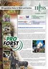 Newsletter Nr. 7 - November 2008