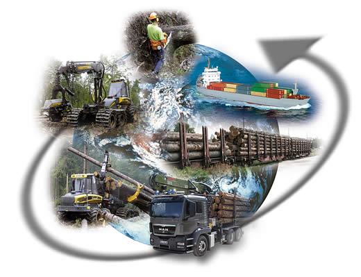 Der Transportkreislauf - Ihre Interforst GmbH bietet Ihnen den kompletten Service (Holzeinschlag, Aufarbeitung, Holzvermarktung, Holzverkauf, Holztransporte). Erfahren Sie mehr über unsere Transportlogistik.